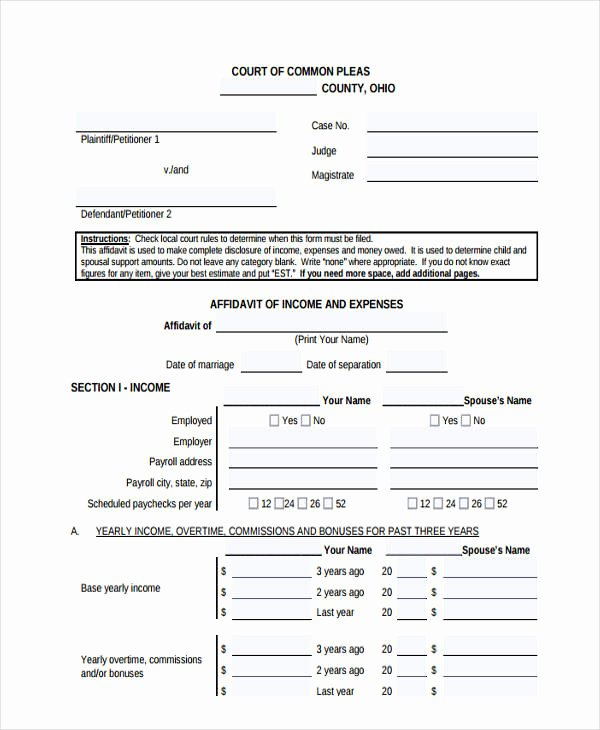 Affidavit Of Income Awesome 10 In E Affidavit form Free Sample Example format