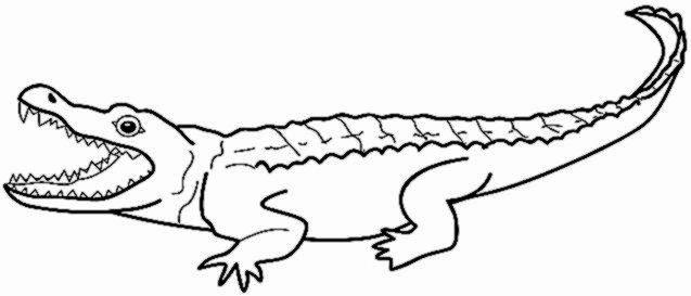 Alligator Template Printable Fresh Alligator Sheet Preschool Cut Coloring Pages