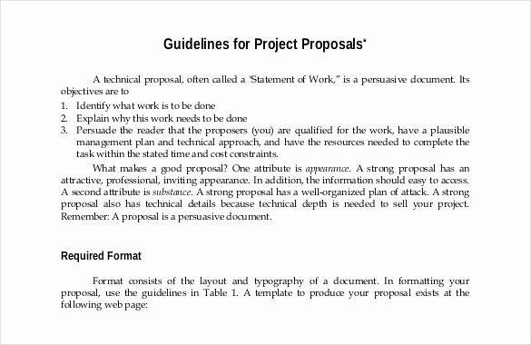 Art Project Proposal Sample Lovely 47 Project Proposal Templates Doc Pdf