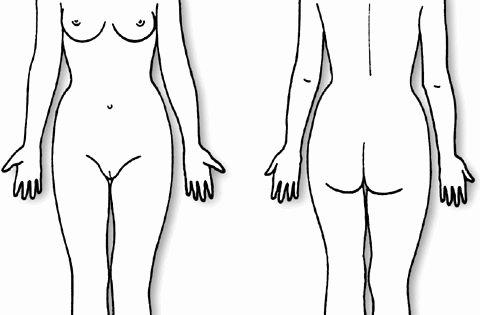 Blank Female Body Template Inspirational Body Diagram form Female