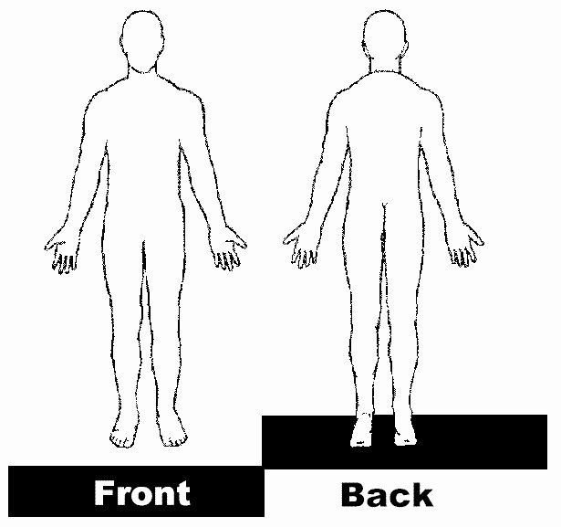 Blank Female Body Template Lovely 31 Best Images About Physical Examination On Pinterest