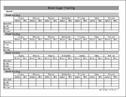 Blood Sugar Log Template Excel Awesome Type 1 2 Diabetes Blood Sugar Log Excel