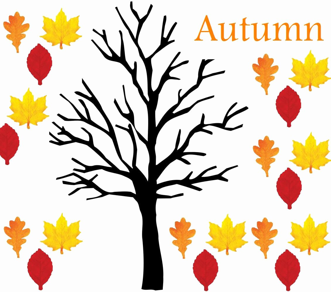 Bulletin Board Tree Template Fresh Ms Leonard S Classroom Blog