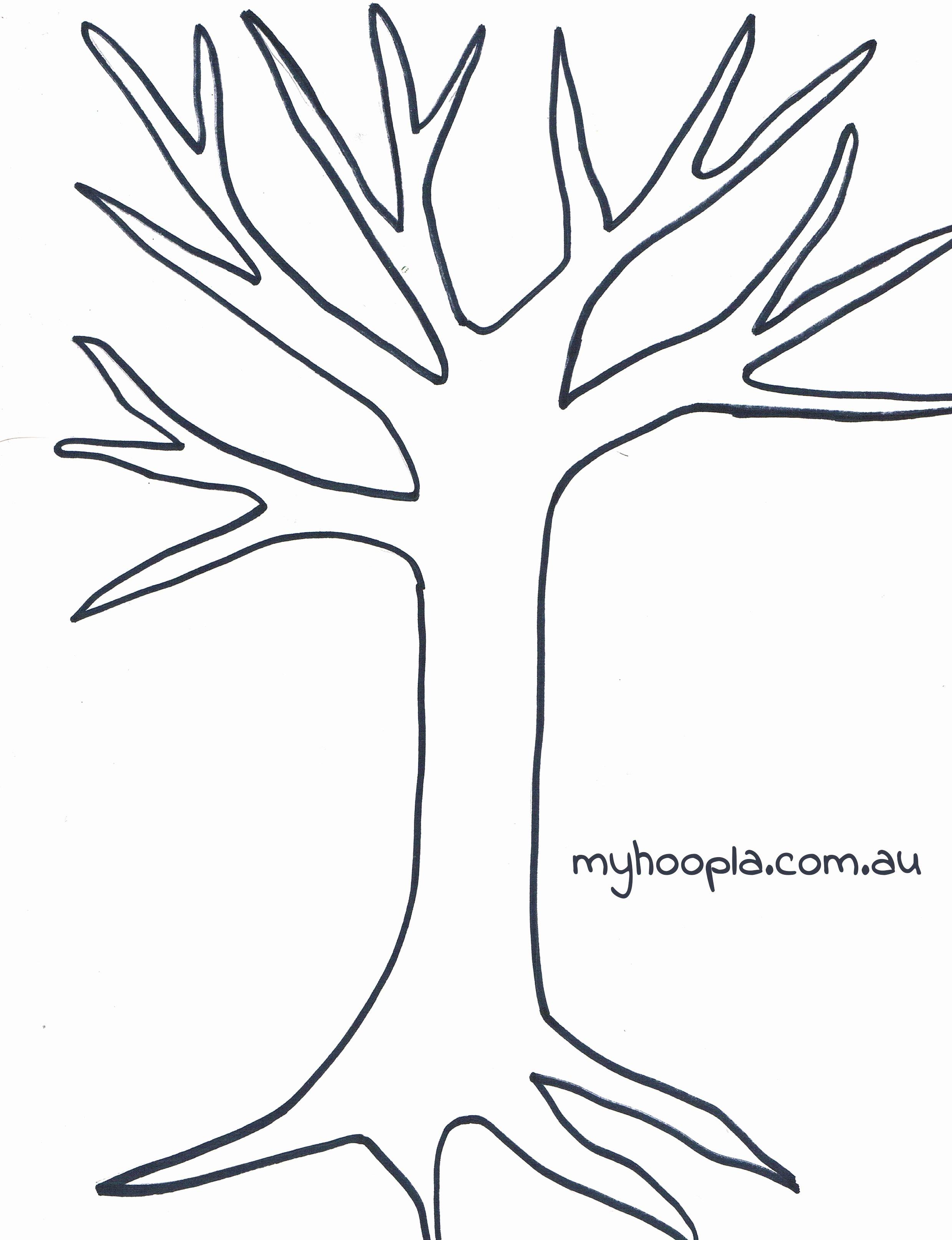 Bulletin Board Tree Template New Kandinsky S Trees School Pinterest