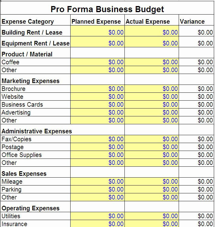 Business Budget Excel Template Unique Pro forma Business Bud Template
