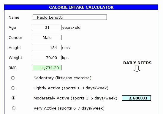 Calorie Counter Spreadsheet New Workout Tracker Calorie Counter…all In Excel Excel with