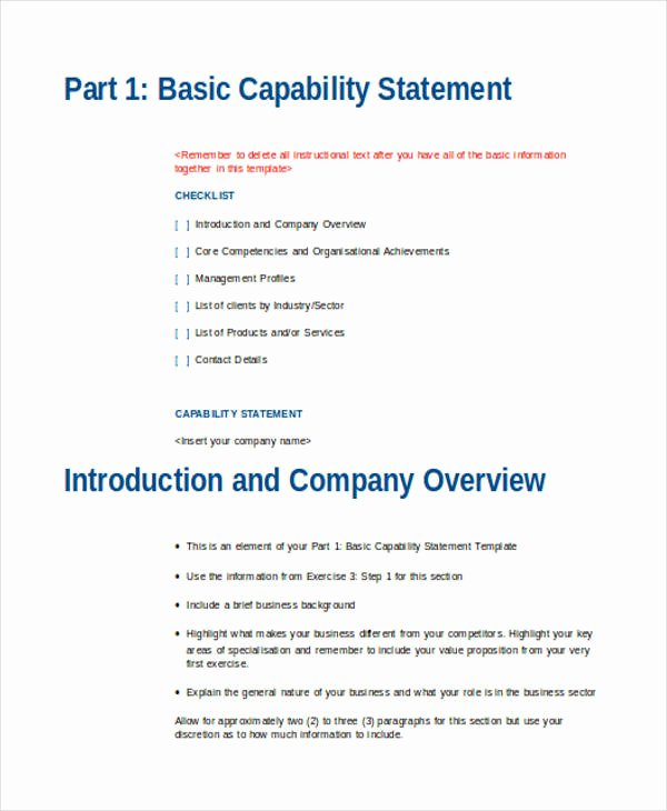 Capability Statement Template Doc Beautiful 33 Statement Examples In Word