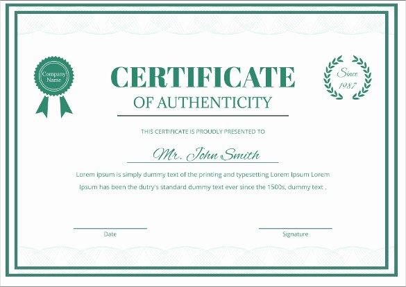 Certificate Of Authenticity Template Beautiful Certificate Templates