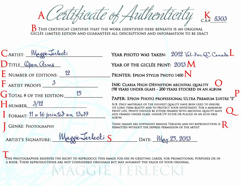 Certificate Of Authenticity Template Inspirational Certificate Authenticity Graphy