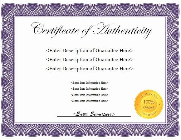 Certificate Of Authenticity Template Unique 16 Certificate Of Authenticity Samples