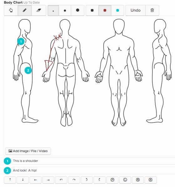 Chiropractic soap Notes Template Free Luxury Chart Parts for Creating A Chart Template
