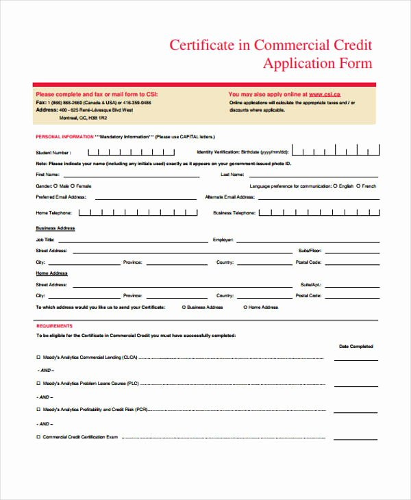 Commercial Credit Application Beautiful 32 Credit Application forms In Pdf