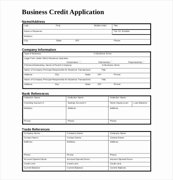 Commercial Credit Application Beautiful Credit Application Template 33 Examples In Pdf Word