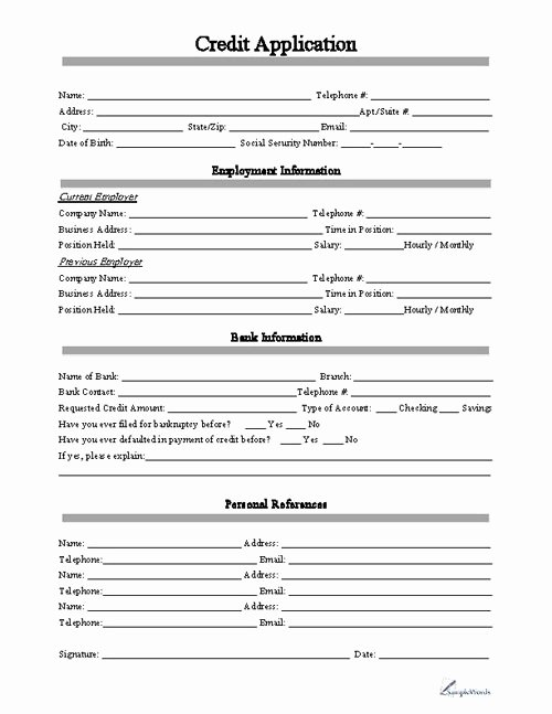 Commercial Credit Application New Free Printable Business Credit Application form form Generic