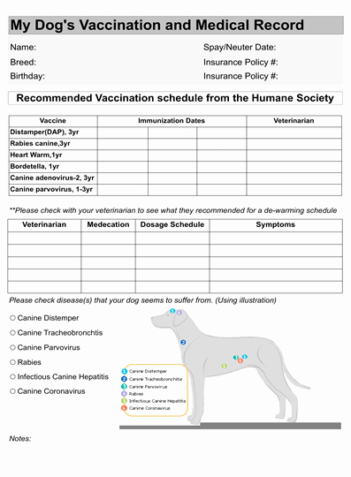 Dog Health Record Template Beautiful Dog Vaccination Record