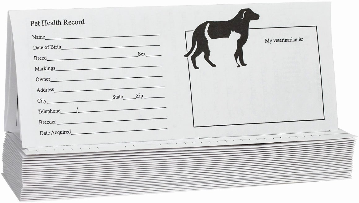 Dog Shot Record Template Fresh Pet Records for Dog and Cats Instruments