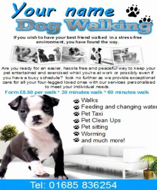Dog Walking Template Beautiful Dog Walking Business Templates Download Business