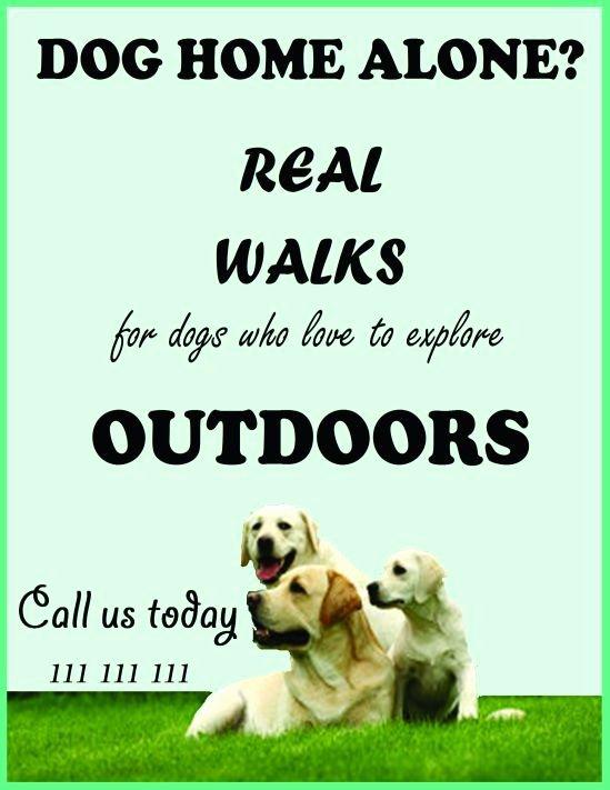 Dog Walking Template Inspirational Dog Walking Flyers Template
