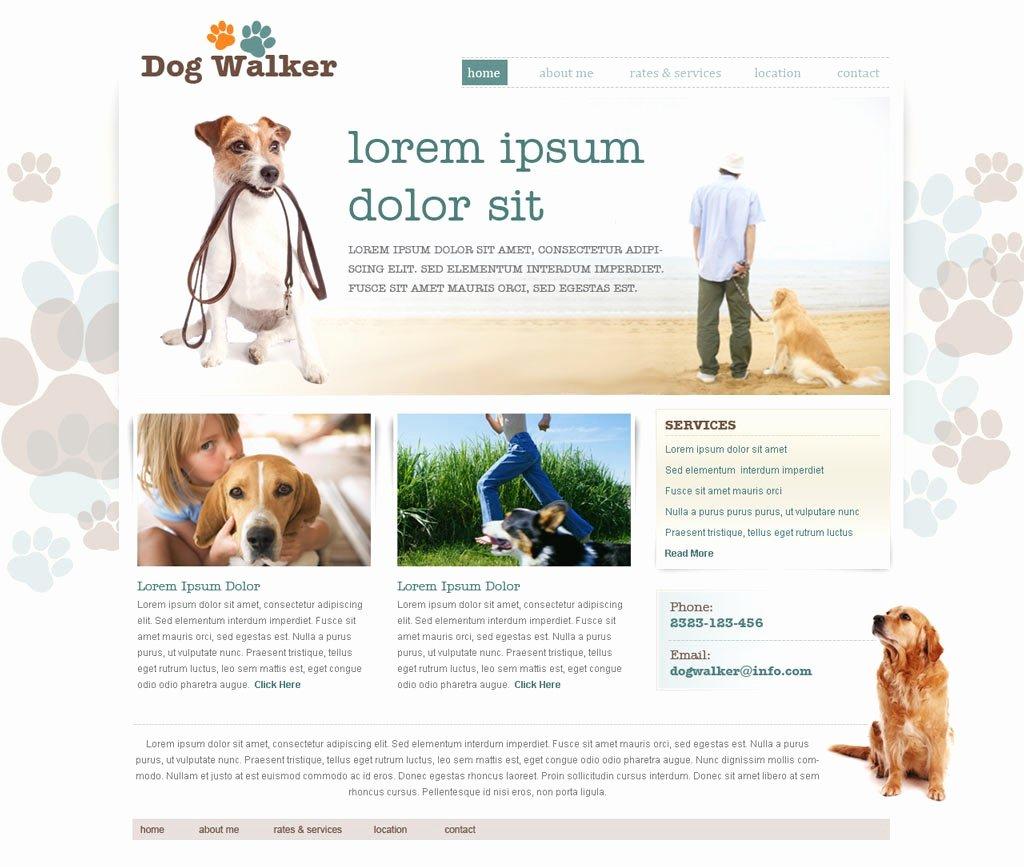 Dog Walking Template Luxury Dog Walking Website Template
