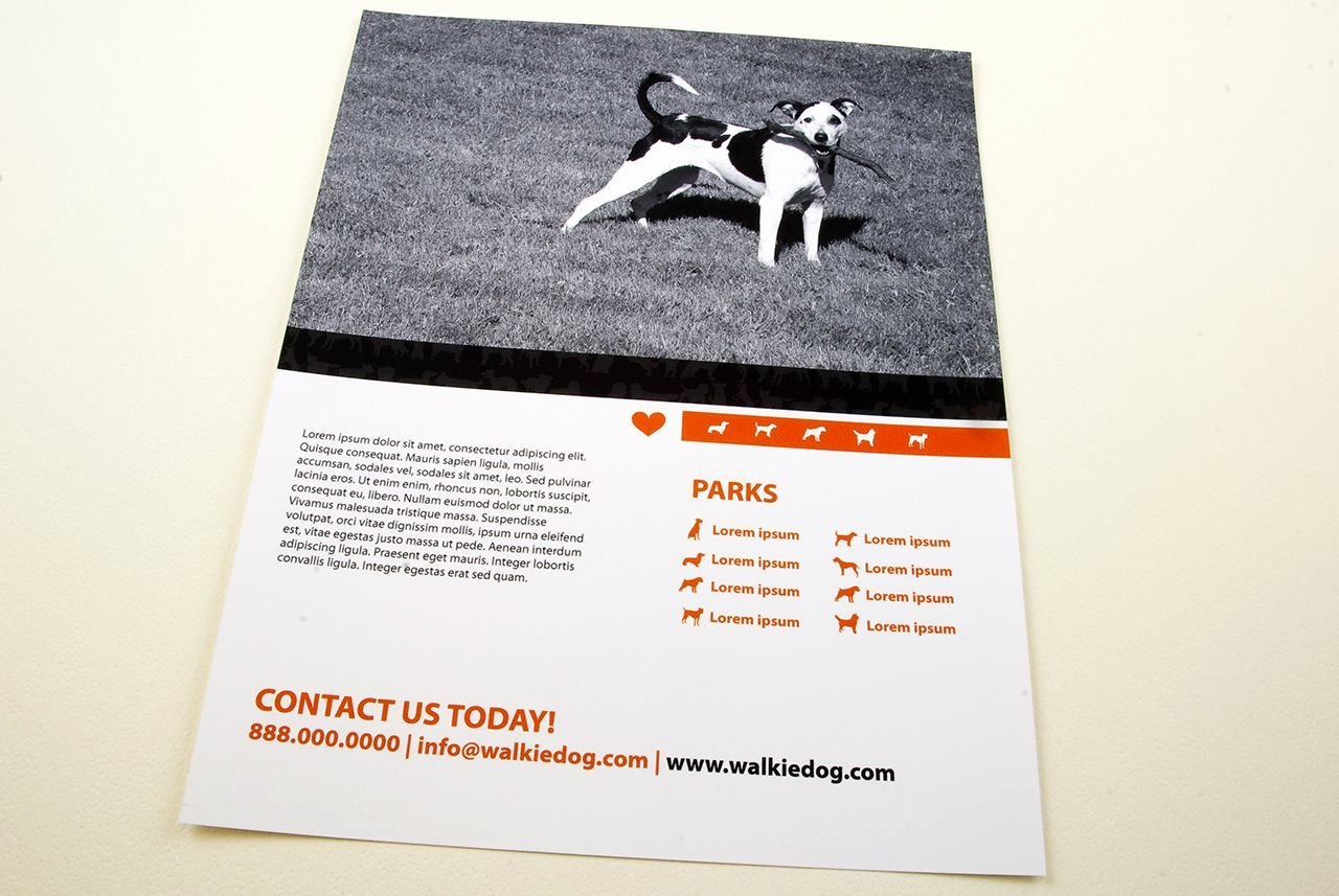 Dog Walking Template New Dog Walking Service Flyer Template