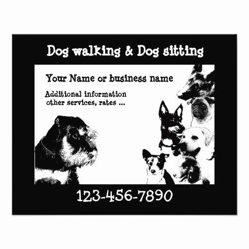 Dog Walking Template New Dogwalker 3 Flyer
