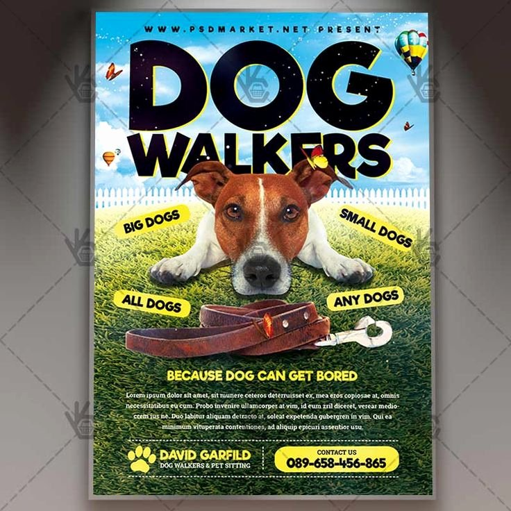 Dog Walking Template Unique Best 25 Dog Walker Flyer Ideas On Pinterest