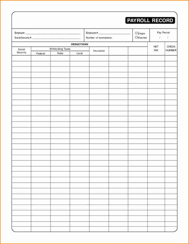 Employee Payroll Ledger Template Awesome 7 Employee Payroll Record Template