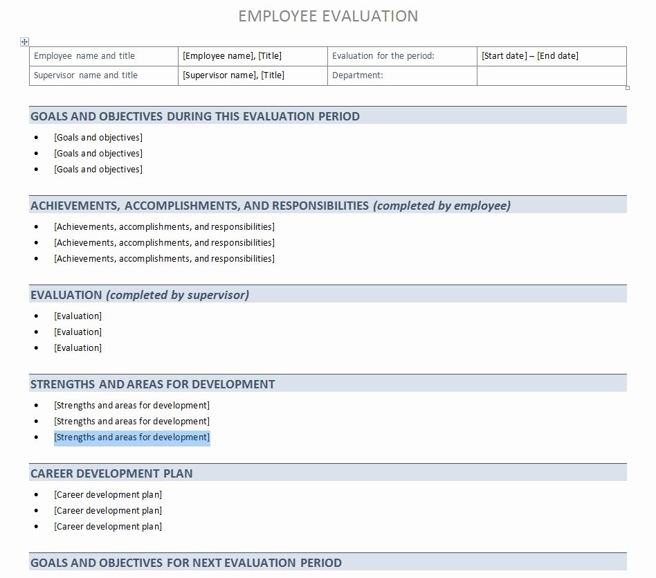Employee Performance Evaluation form Excel Beautiful Performance Evaluation Template