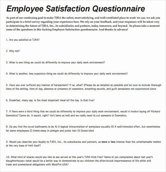 Employee Satisfaction Survey Questionnaire Doc Awesome Employee Satisfaction Survey 9 Download Free Documents