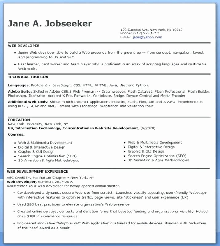 Entry Level Web Developer Resume Examples Best Of Entry Level Sql Developer Resume Sample
