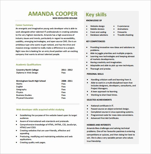 Entry Level Web Developer Resume Examples Elegant 11 Web Developer Resume Templates Doc Pdf