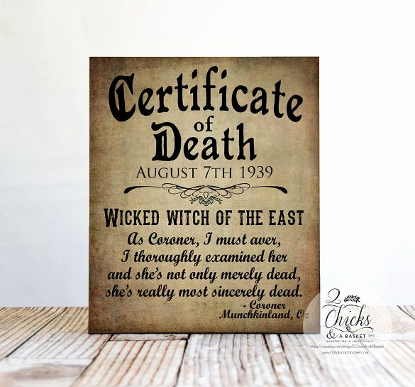 Fake Obituary Maker New Sample Death Certificate Template – 11 Free Word Pdf