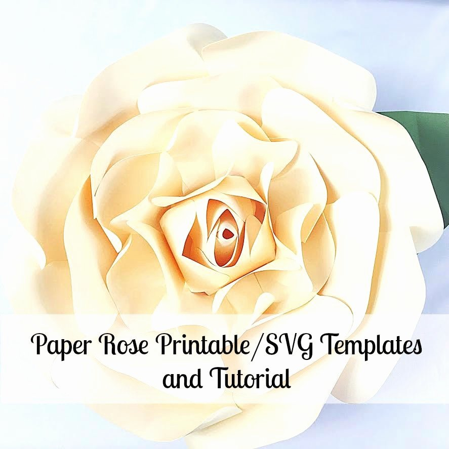 Giant Rose Template Fresh Paper Flowers Giant Paper Flowers Printable Rose