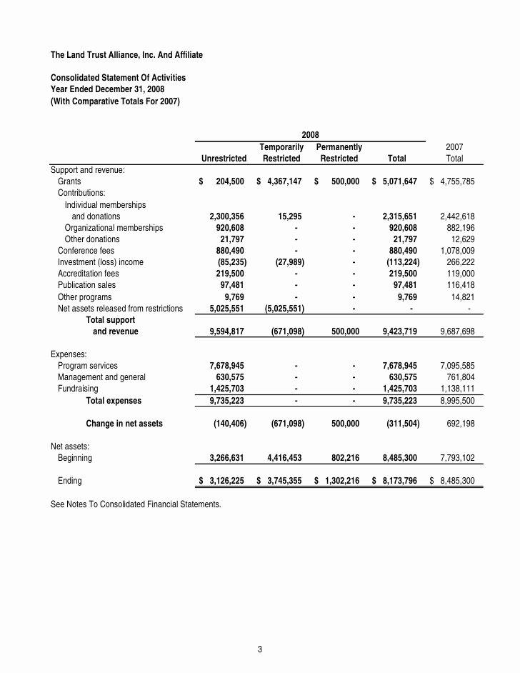 Grant Financial Report Template Inspirational Financial Statement Template