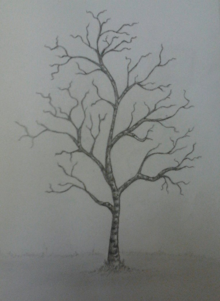 How to Draw A Simple Tree without Leaves Luxury Tree without Leaves by Ilinea On Deviantart