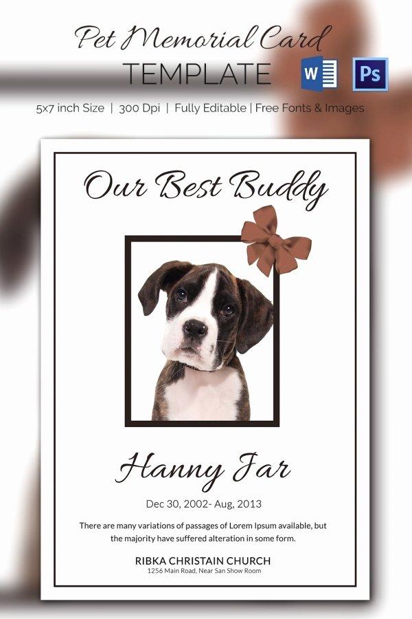 Memorial Card Template Beautiful 15 Pet Memorial Card Designs & Templates Psd Ai