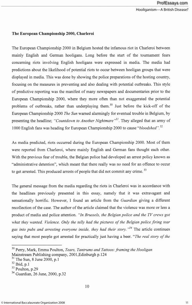 essays examples english
