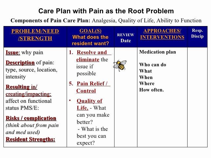 Nursing Patient Teaching Plan Sample Lovely Care Plan Template