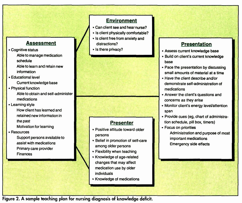 Nursing Teaching Plan Examples New Nursing Process Teaching Elderly Clients