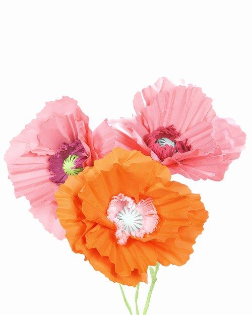 Paper Flower Template Martha Stewart Best Of Giant Paper Poppy Flower Decoration & Video