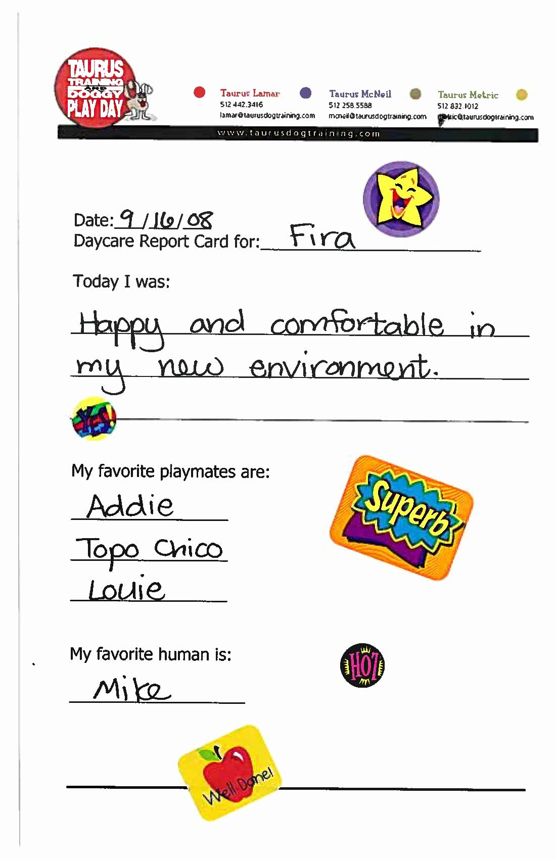 Pet Report Card Template Best Of 21 Of Doggy Daycare Report Card Template