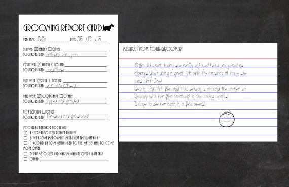 Pet Report Card Template Best Of Grooming Report Card Template for Index Cards by