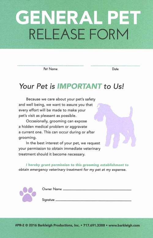 Pet Report Card Template Elegant 37 Best Dog Grooming Images On Pinterest