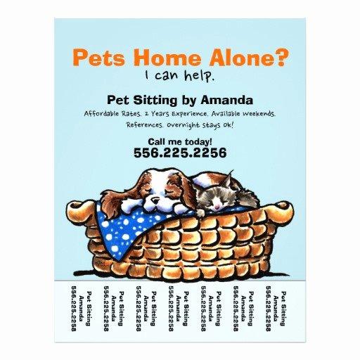 Pet Sitting Flyer Template Free Luxury Pet Sitter Sitting Personalized Tear Sheet Custom Flyer
