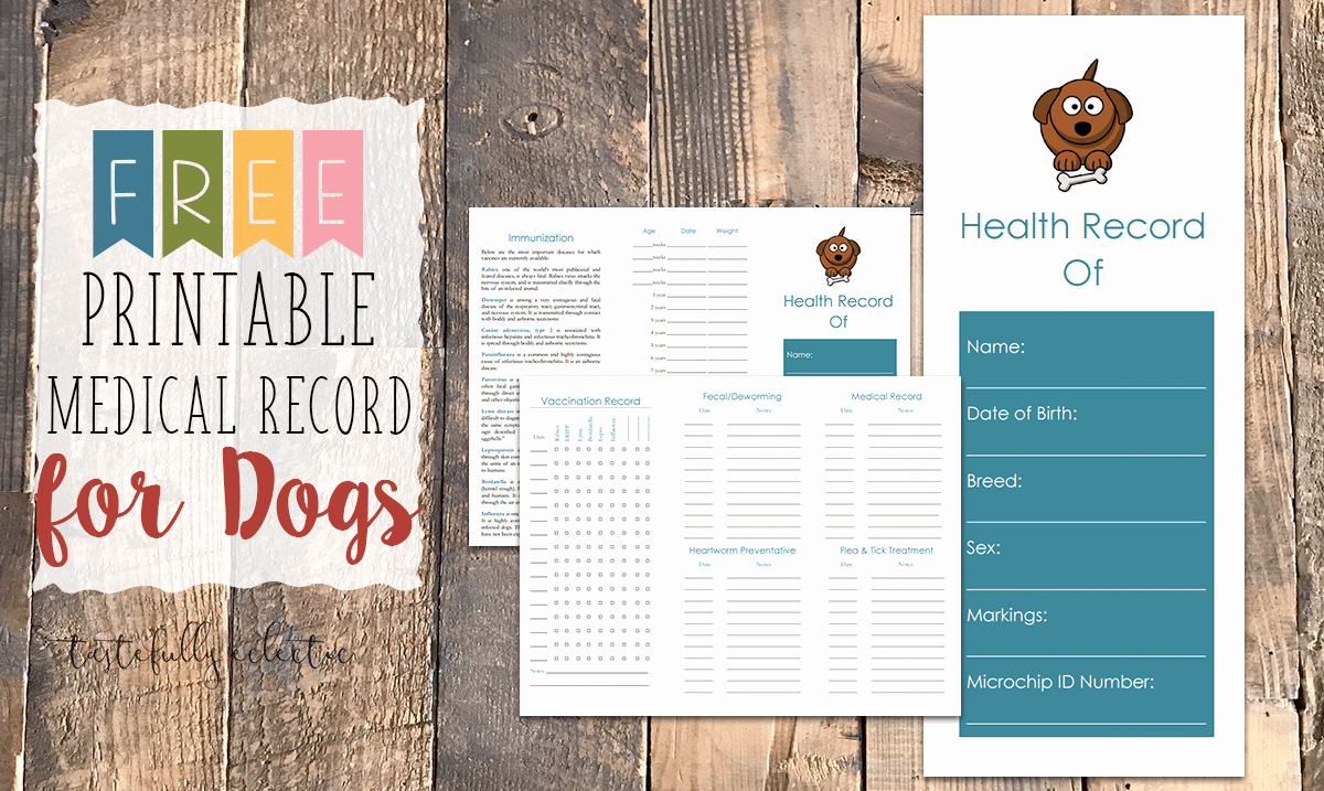 Printable Puppy Shot Records Fresh Free Printable Medical Record for Dogs Tastefully Eclectic