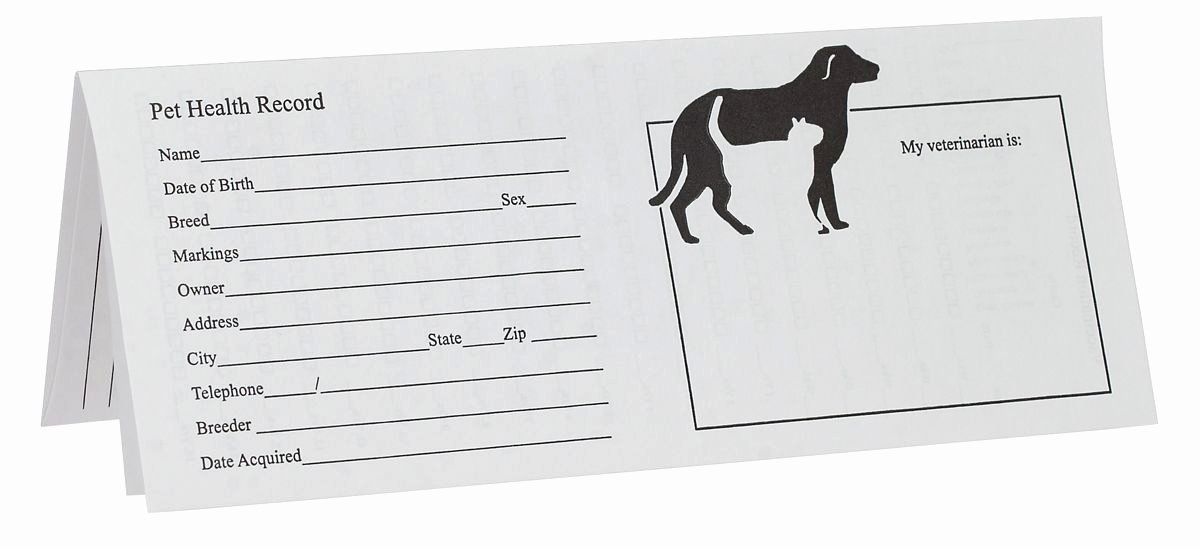 Printable Puppy Shot Records New Printable Puppy Shot Records