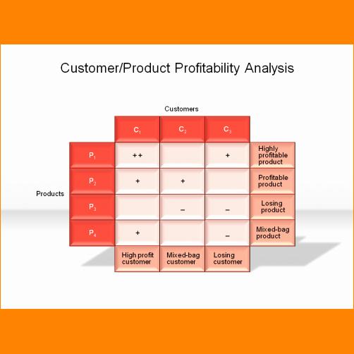 Profitability Analysis Template Awesome 6 Customer Profitability Analysis
