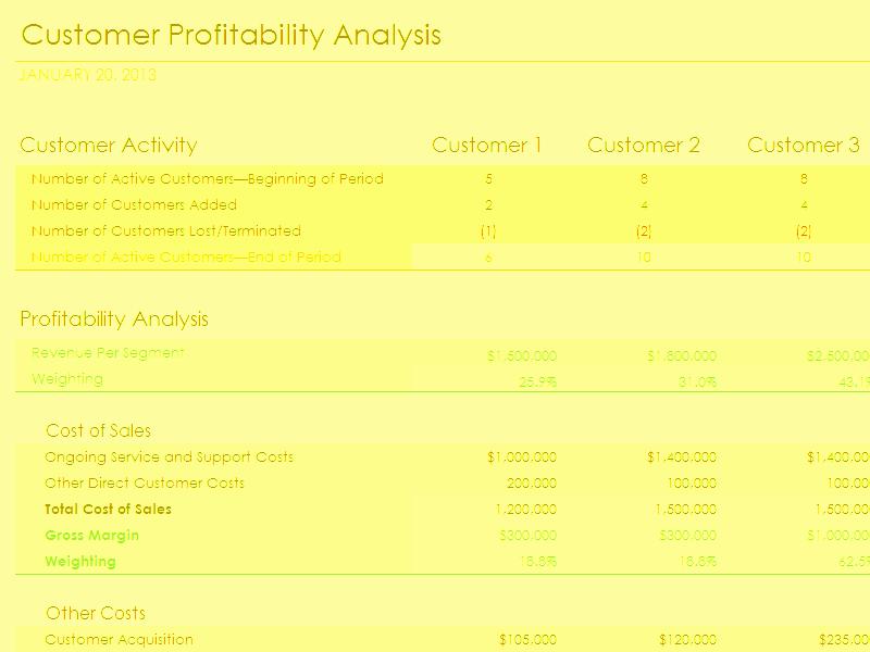 Profitability Analysis Template Best Of Download Customer Profitability Analysis with Summary