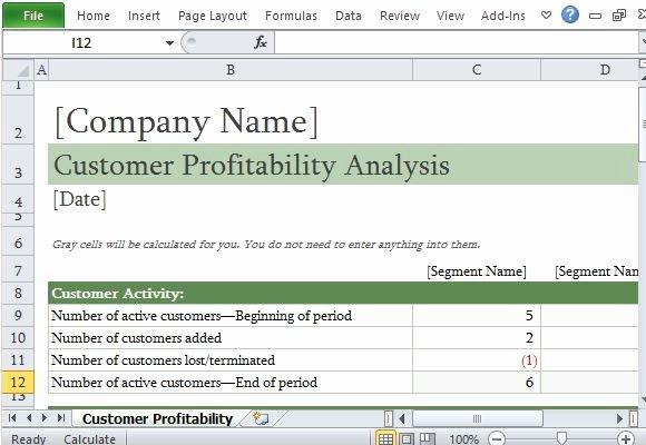 Profitability Analysis Template Luxury How to Easily Perform A Customer Profitability Analysis In