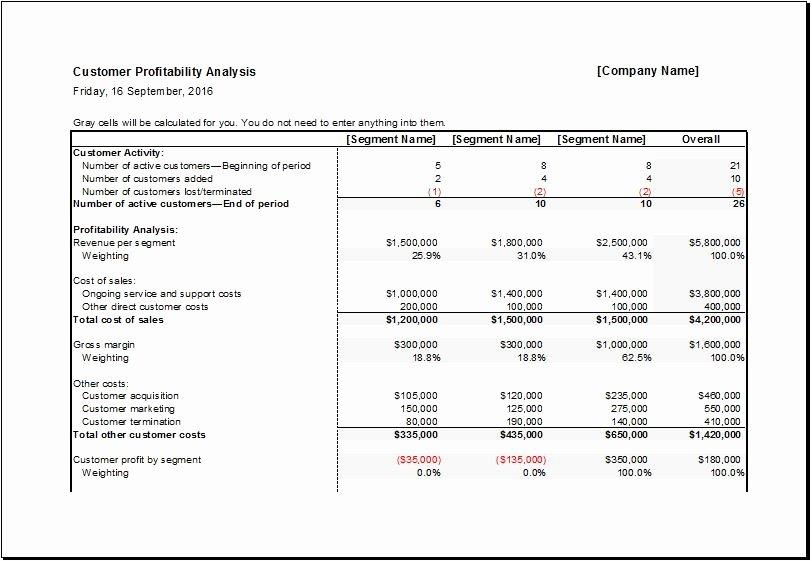 Profitability Analysis Template Unique Customer Portfolio & Profitability Analysis Sheets